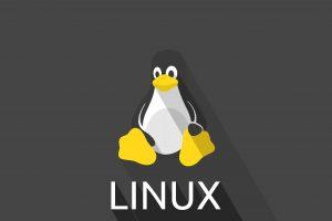 راهنمای انتخاب هاست لینوکسی مناسب برای میزبانی سایت
