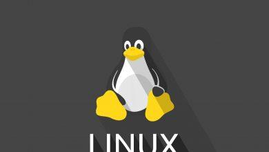 تصویر راهنمای انتخاب هاست لینوکسی مناسب برای میزبانی سایت